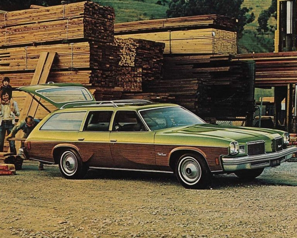 1974 Oldsmobile Vista Cruiser - Information and photos ...