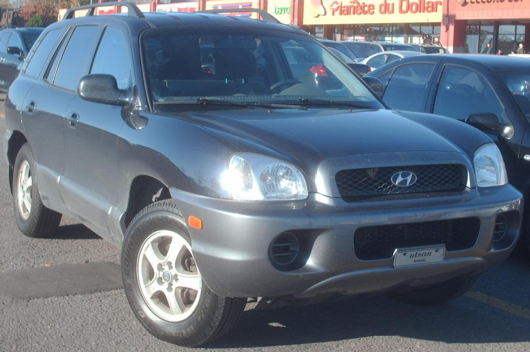 2004 hyundai santa fe information and photos momentcar. Black Bedroom Furniture Sets. Home Design Ideas