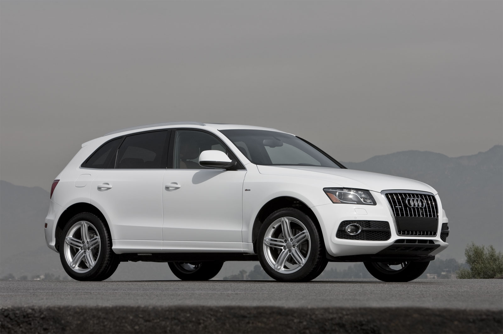 2011 audi q5 information and photos momentcar. Black Bedroom Furniture Sets. Home Design Ideas