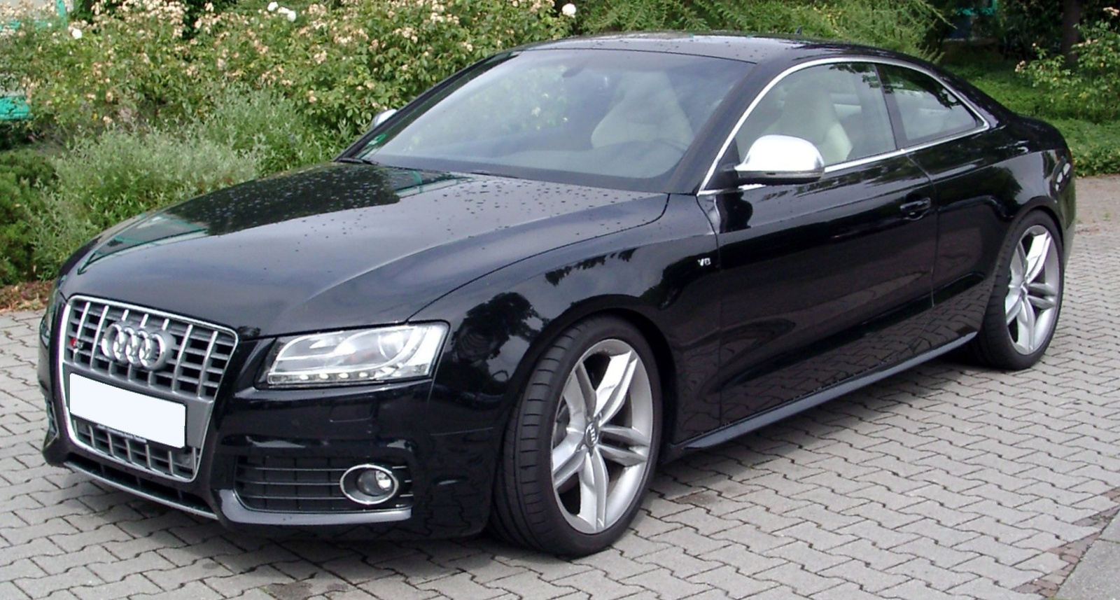 2009 Audi S5 Information And Photos Momentcar