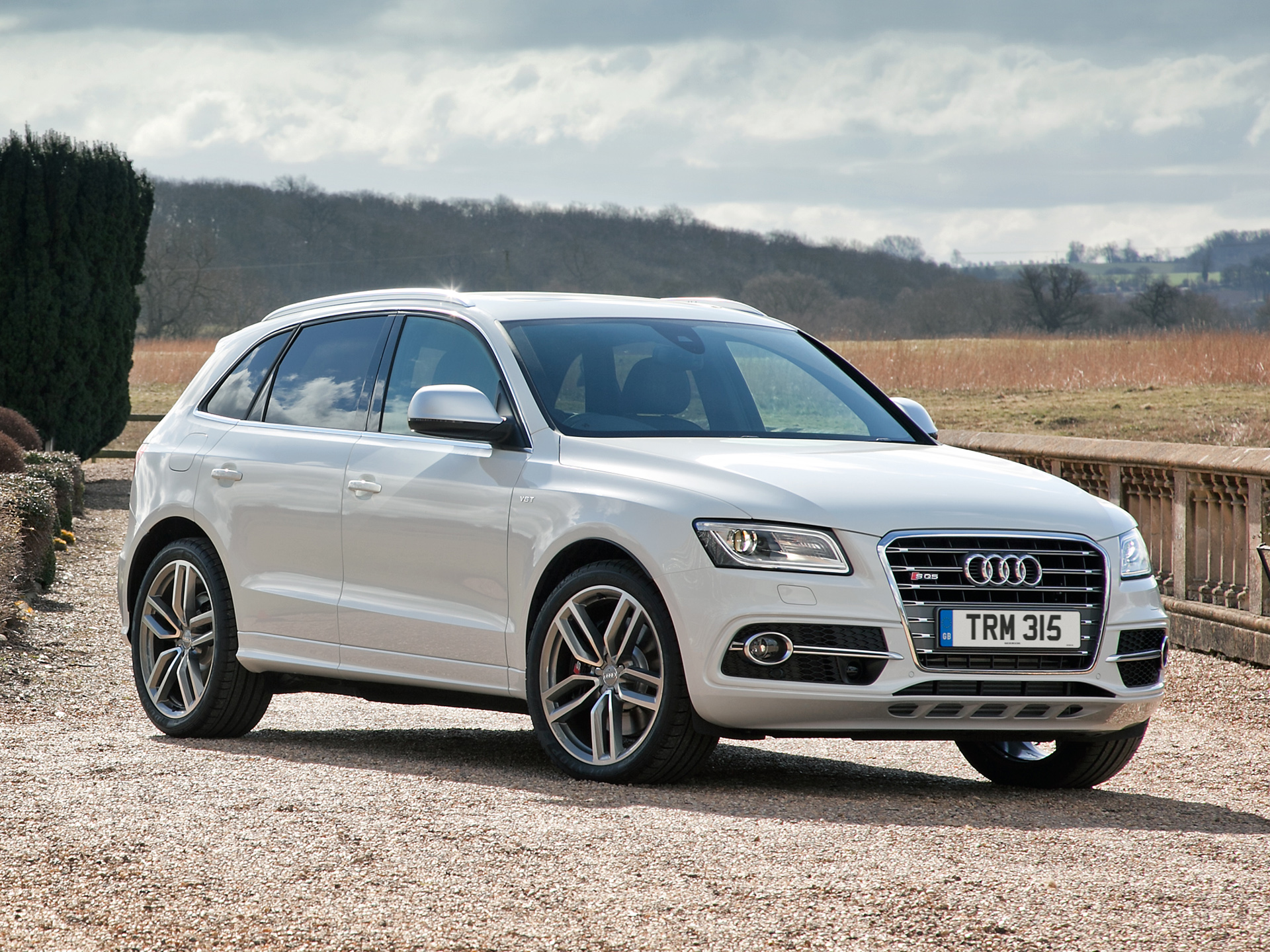2014 Audi Sq5 Information And Photos Momentcar
