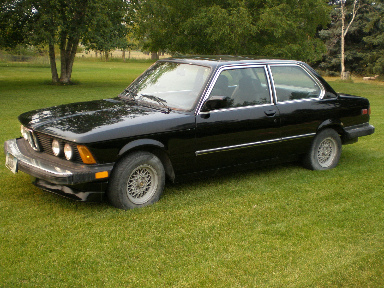 1984 BMW 325 - Information and photos - MOMENTcar