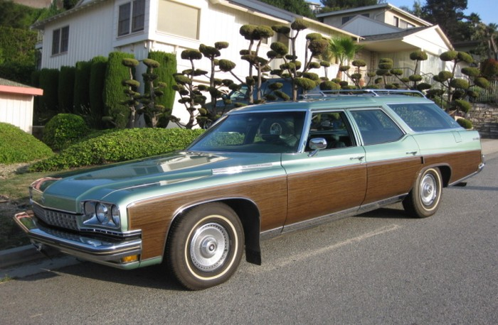 Buick Estate Wagon #5