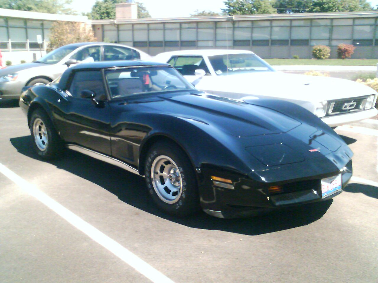 80 chevy corvette gallery. Black Bedroom Furniture Sets. Home Design Ideas