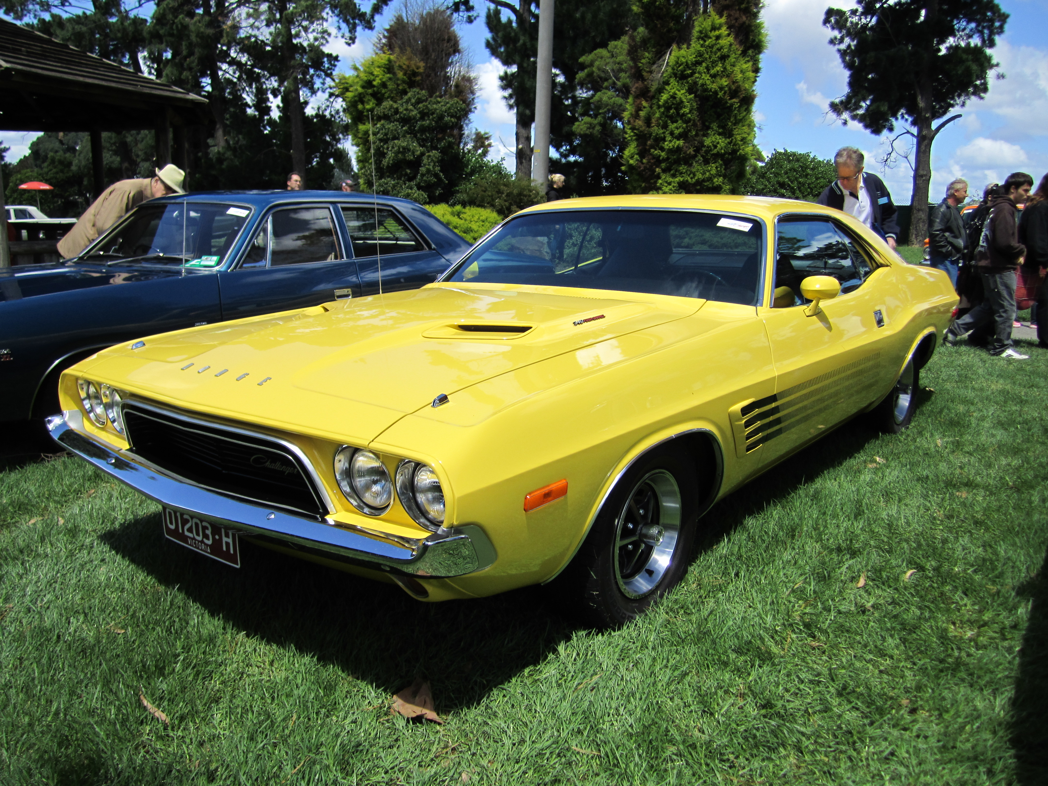 Yellow 73 Challenger Gallery