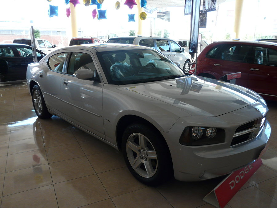 Dodge Charger SXT Fleet #13