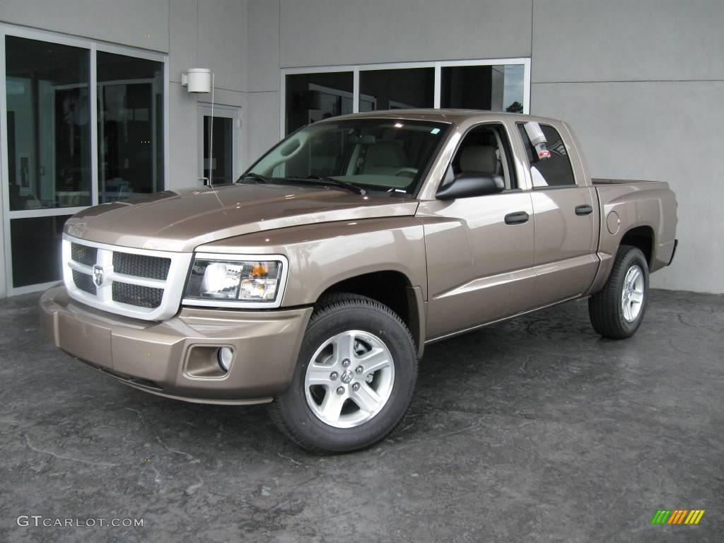Dodge Dakota 2010 #12