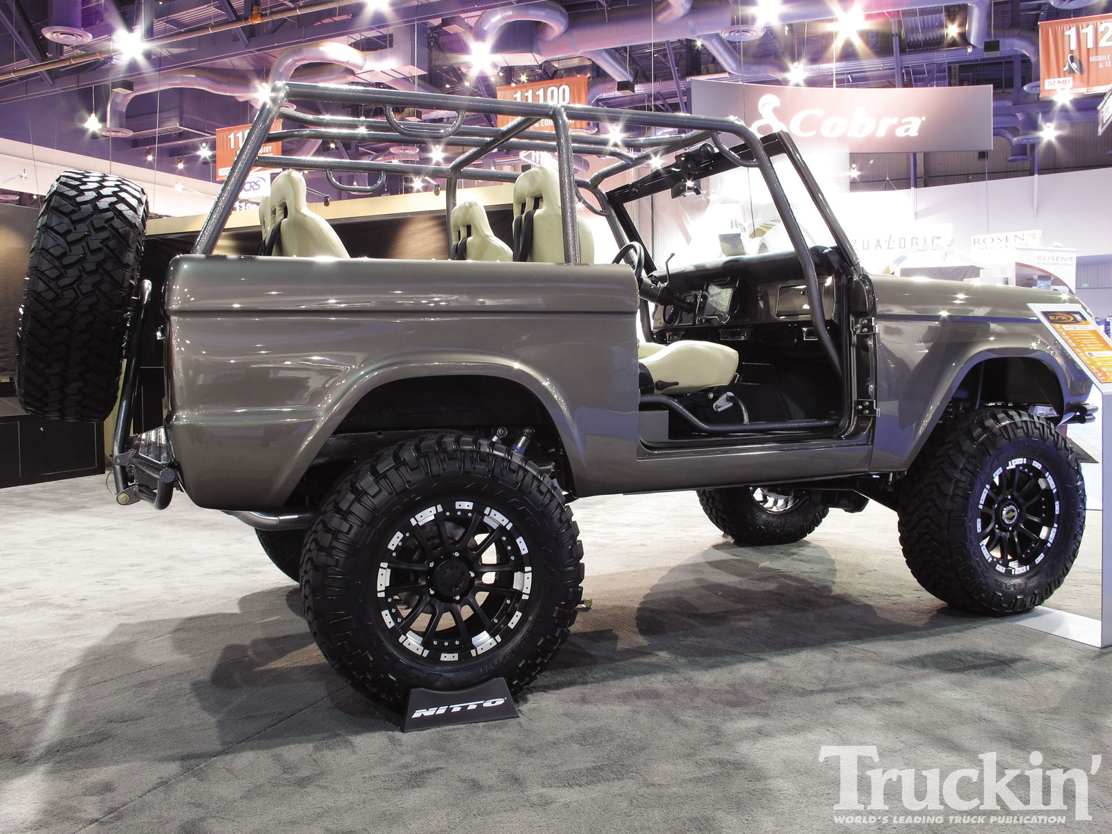 Ford Bronco Custom #2