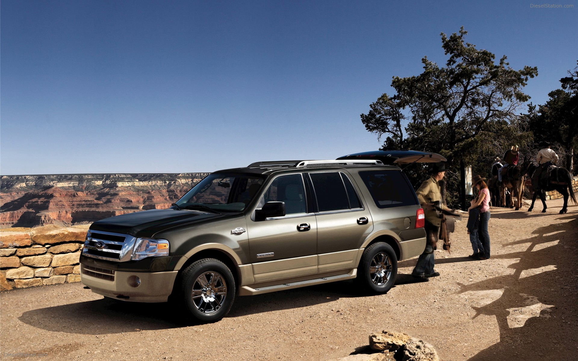 Ford expedition 2009 5 ford expedition 2009 5