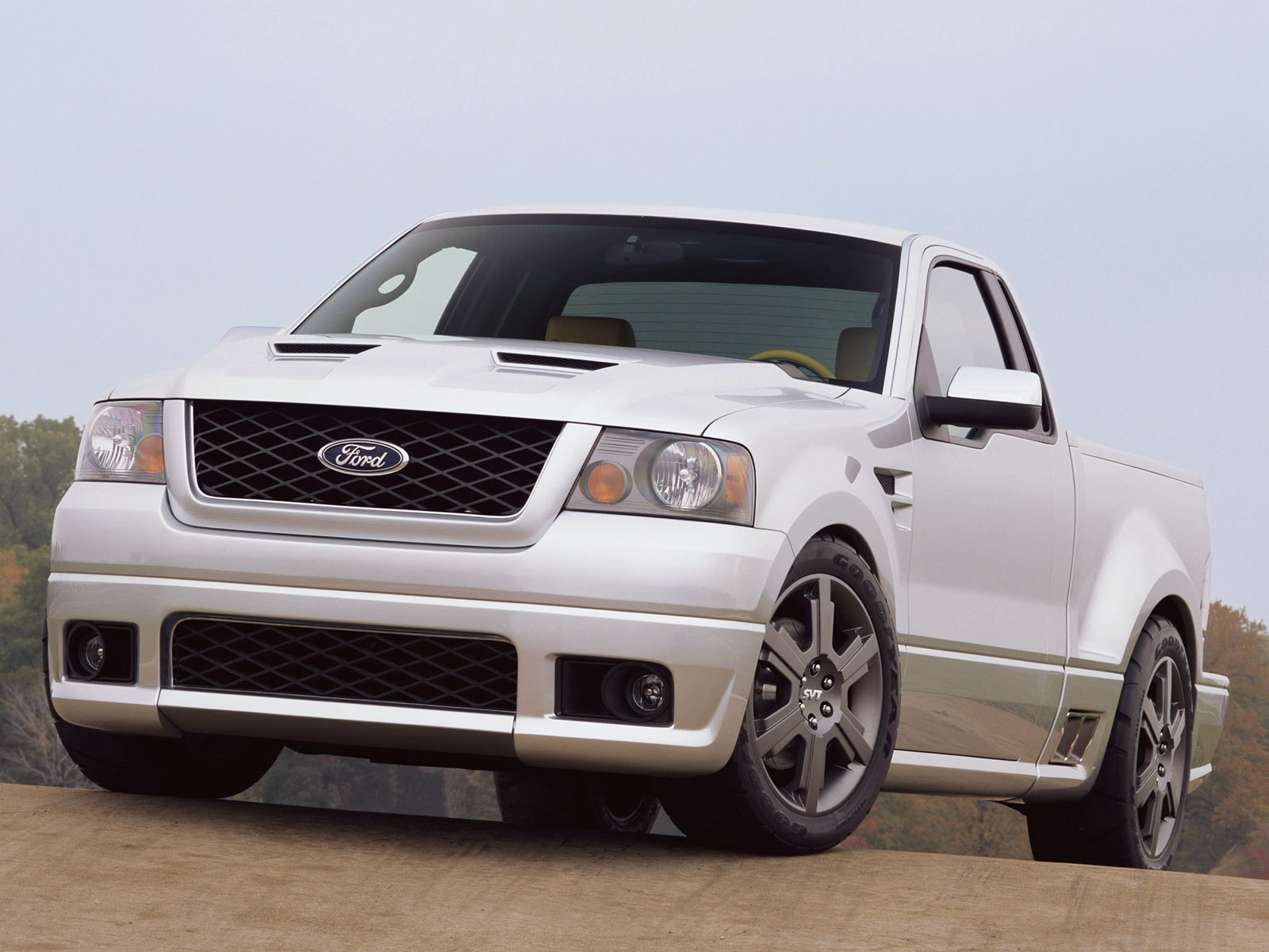 Ford F-150 SVT Lightning #44
