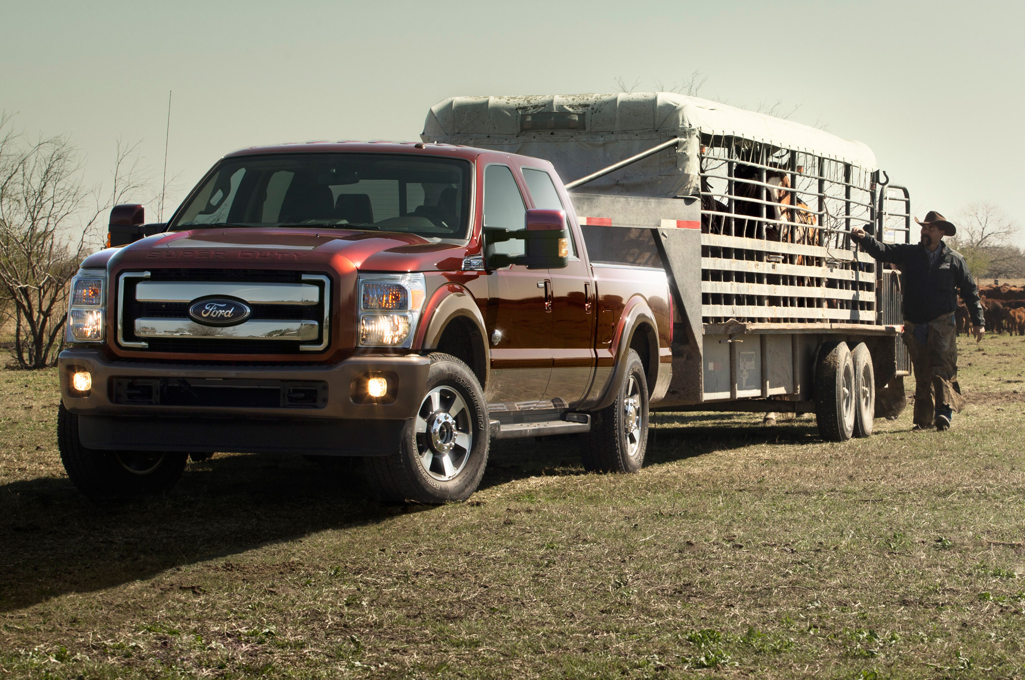 Ford F-250 Super Duty 2015 #10