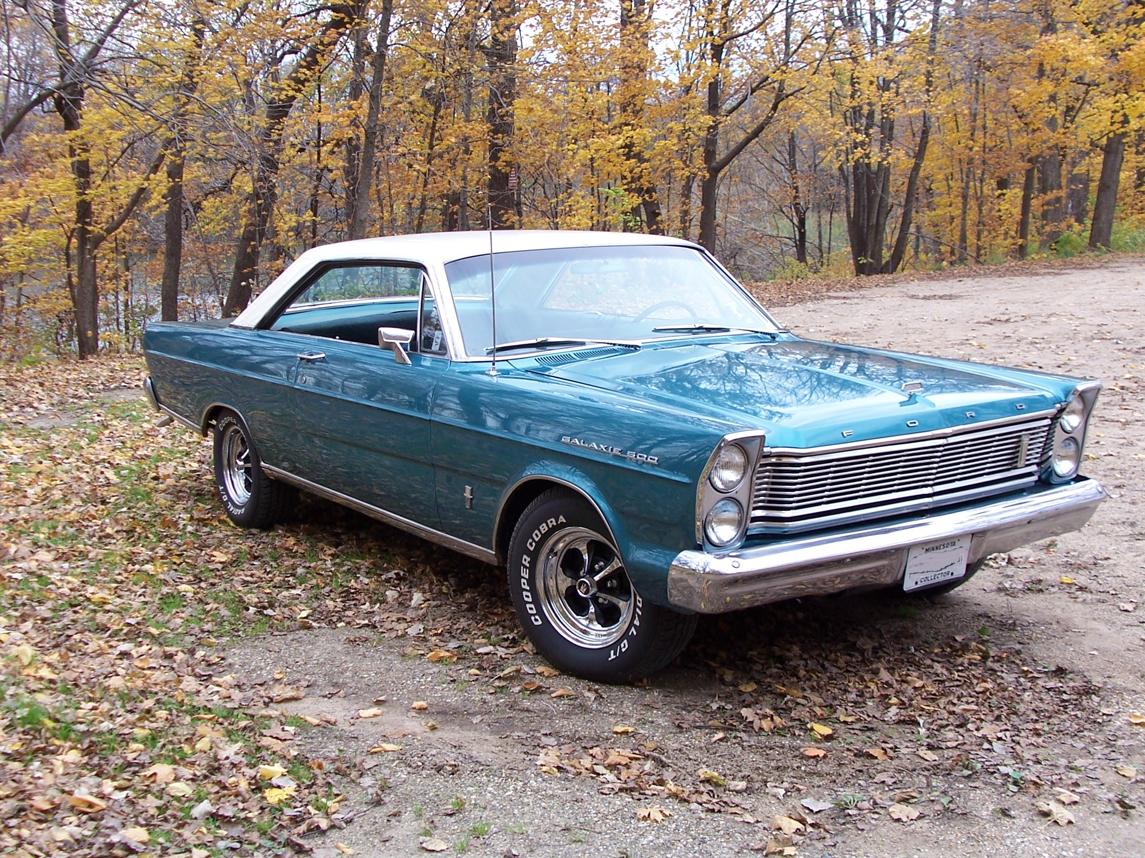 Ford Galaxie Special #7