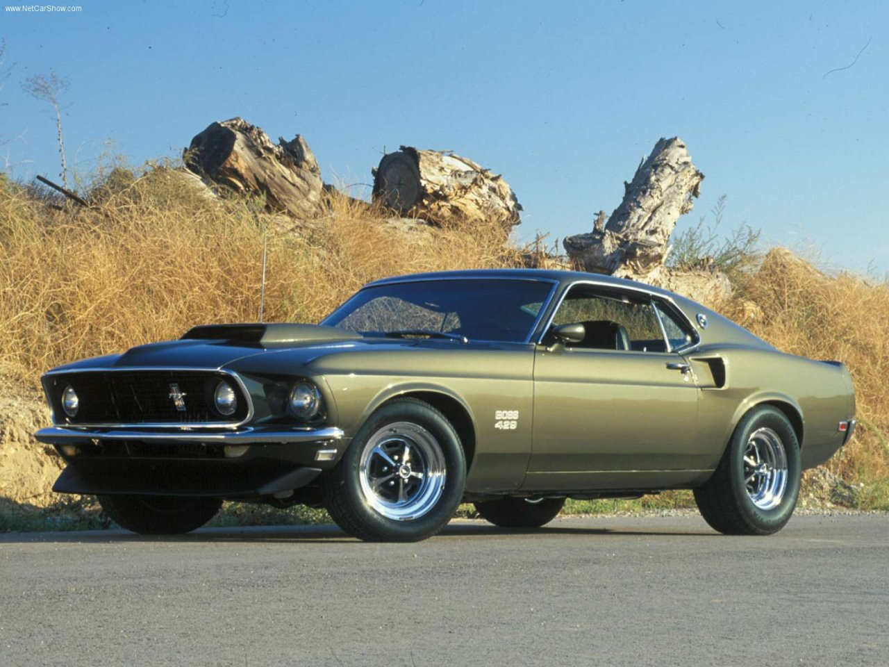 Download ford mustang 1970 7 jpg