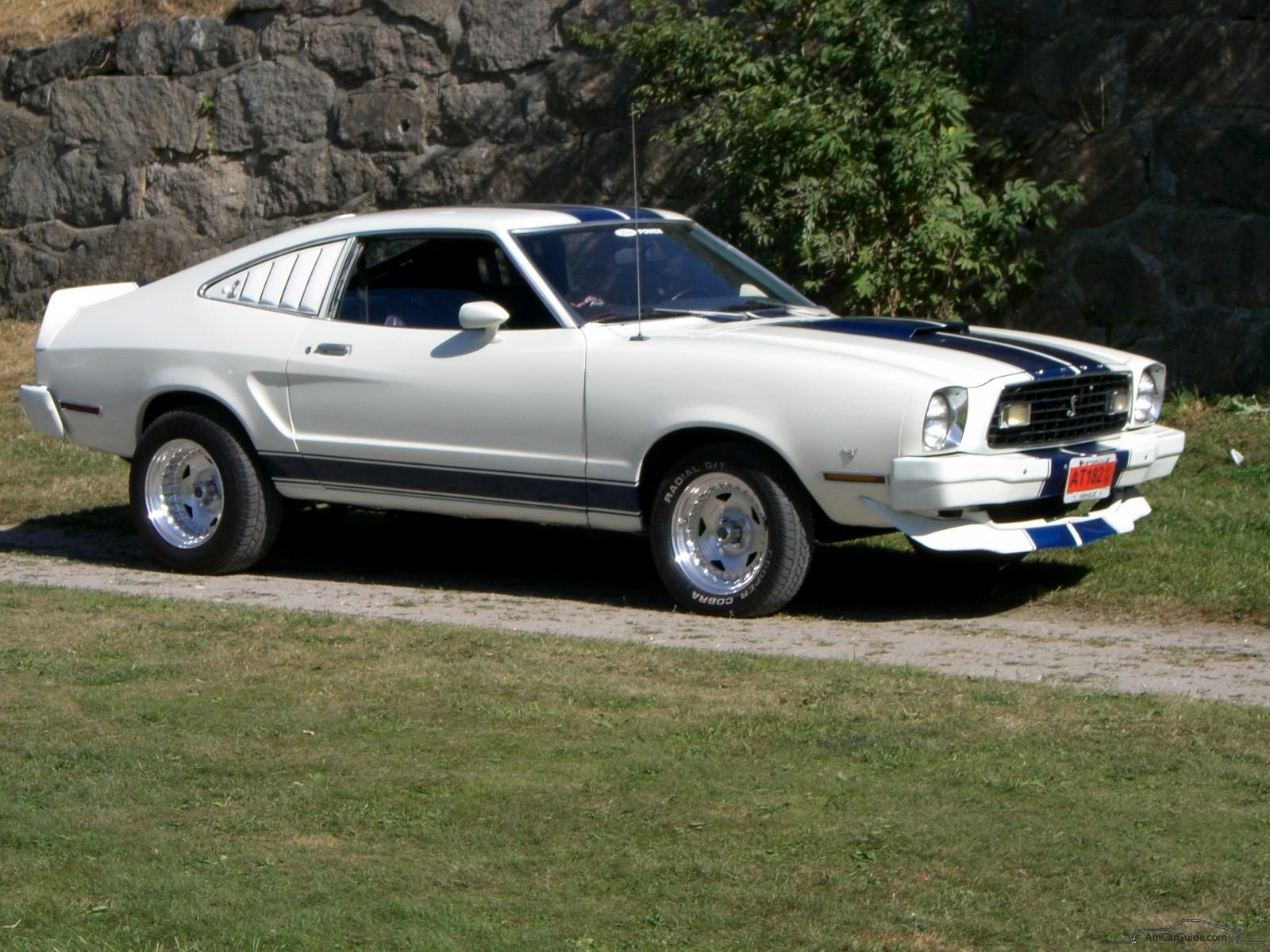 Download ford mustang 1976 7 jpg