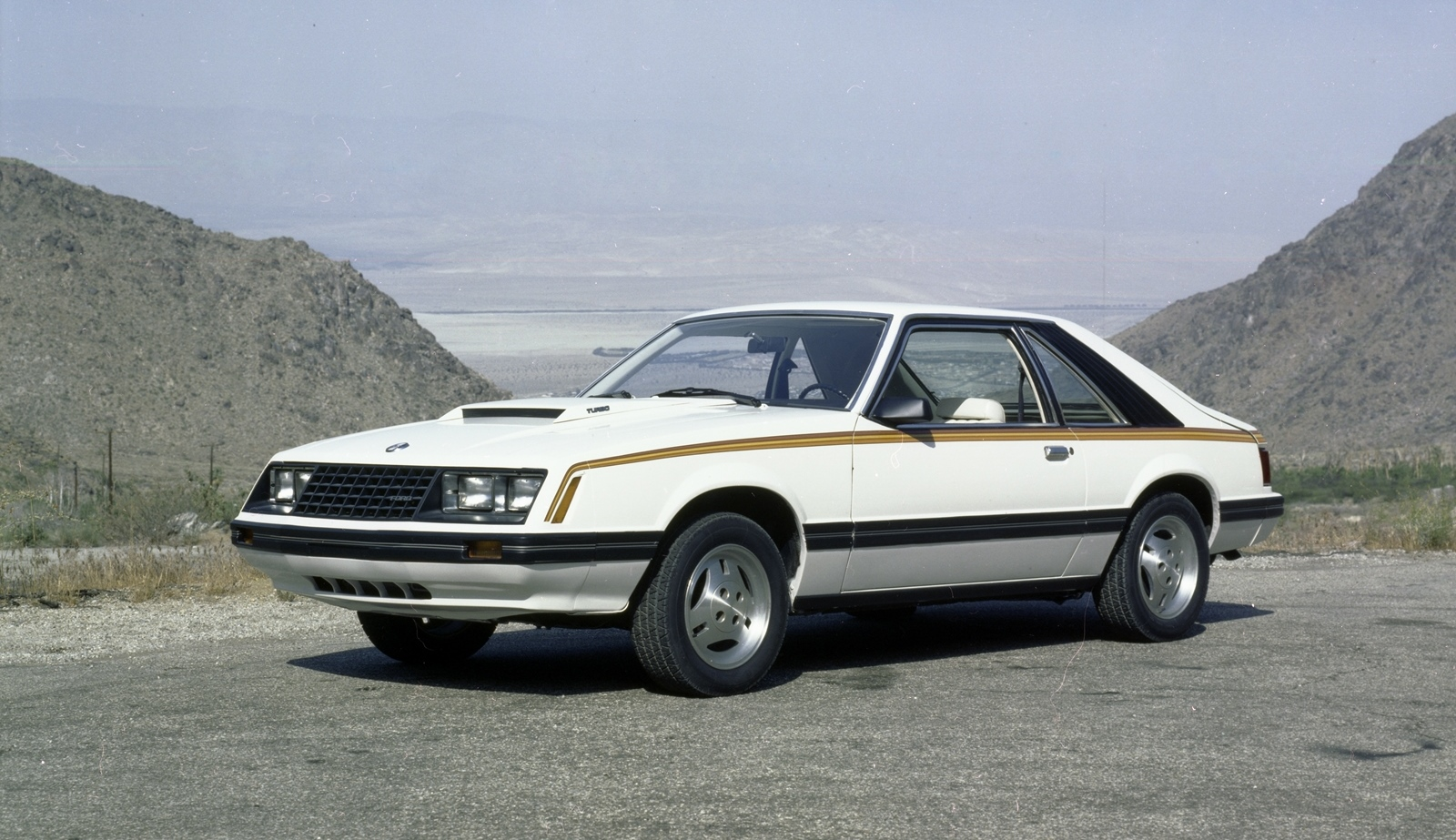 1979 Ford Mustang  Information and photos  MOMENTcar