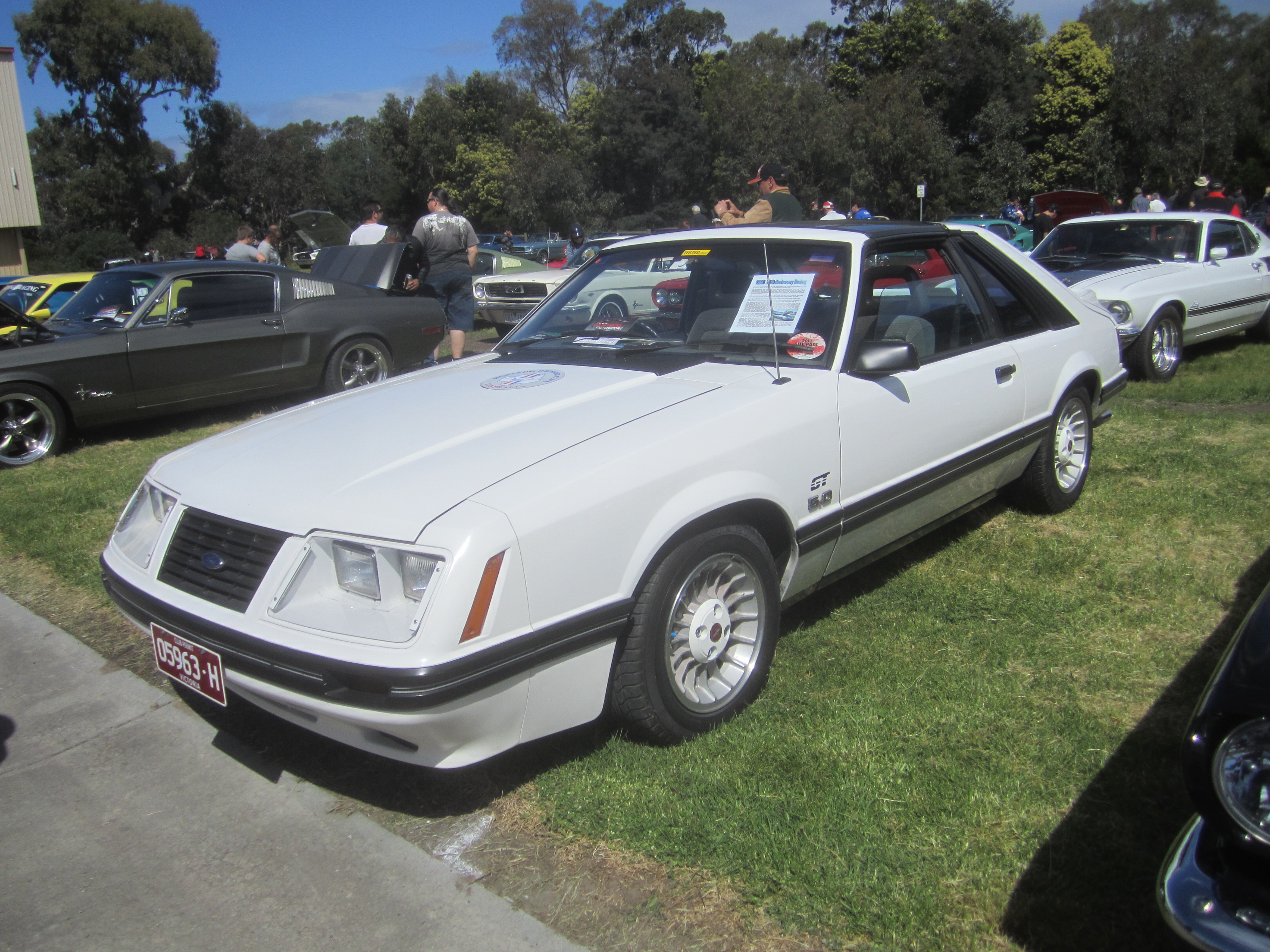Picture of 1984 ford mustang gt350 exterior -  Ford Mustang 1984 13