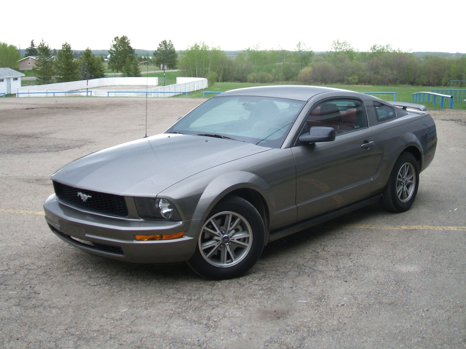 2005 ford mustang information and photos momentcar. Black Bedroom Furniture Sets. Home Design Ideas