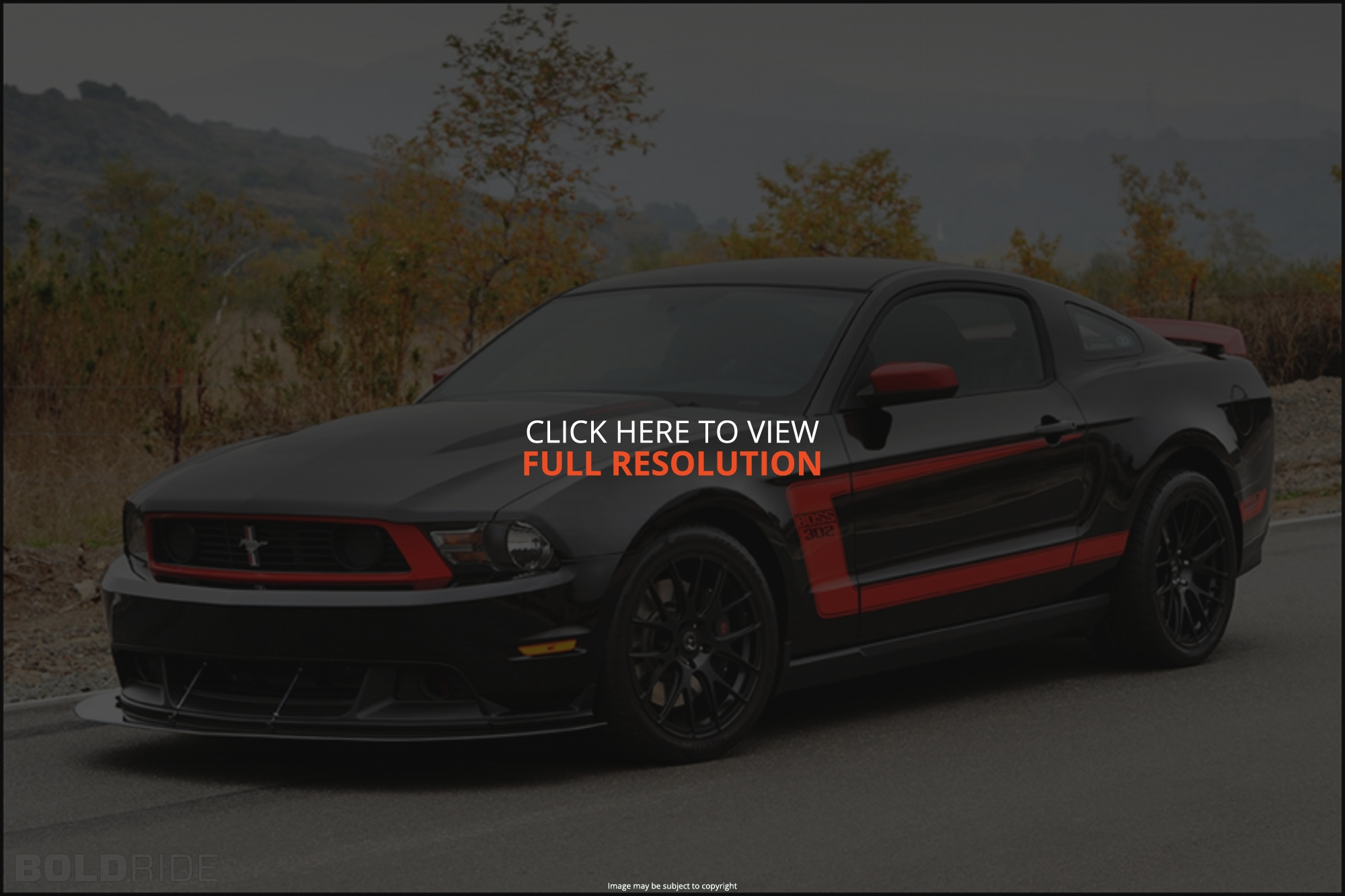 Ford Mustang Boss 302 #18