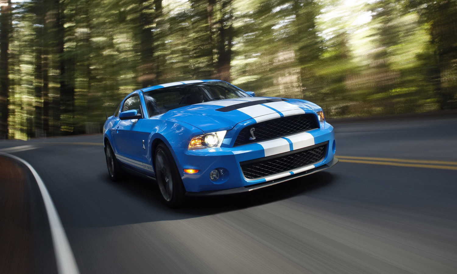 Ford Shelby GT500 2010 #9