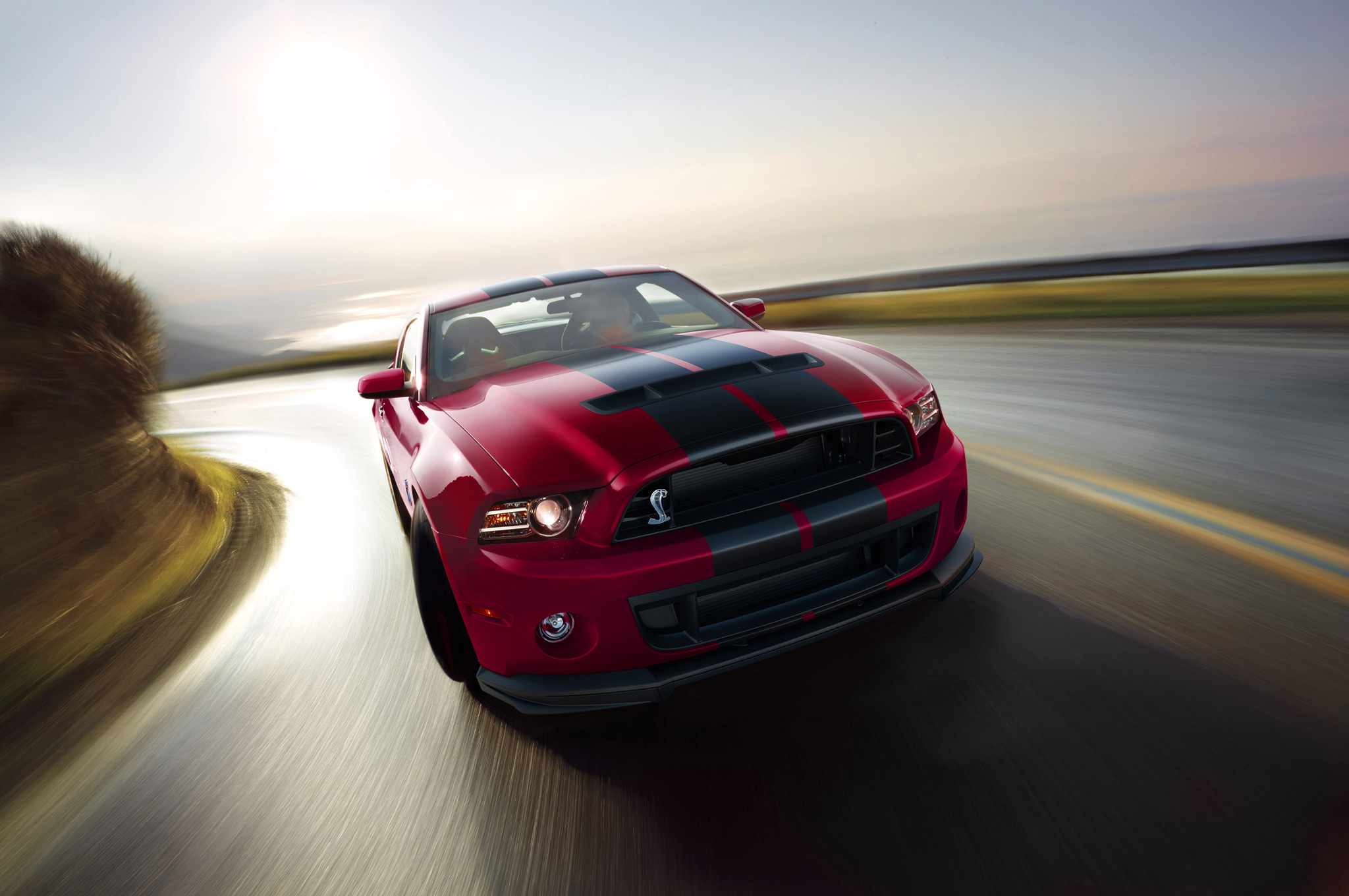 Ford Shelby GT500 2014 #12