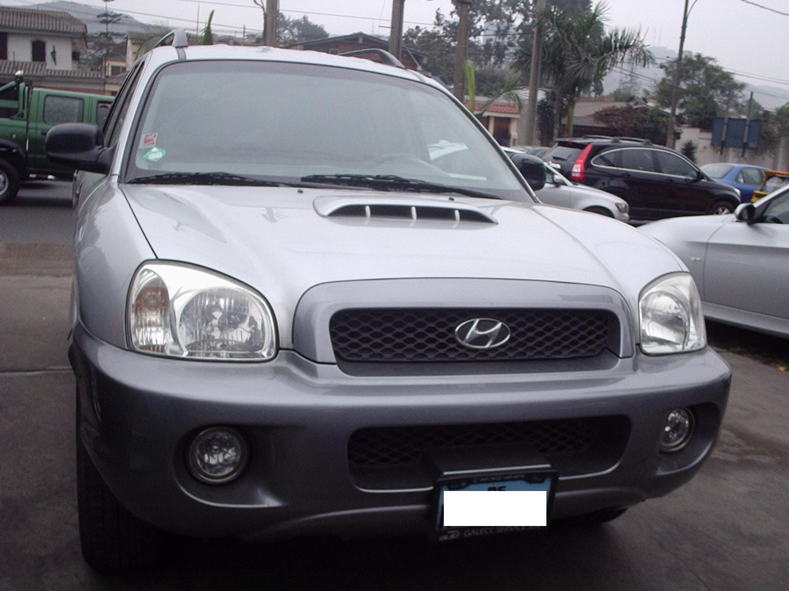 2003 Hyundai Santa Fe Information And Photos Momentcar