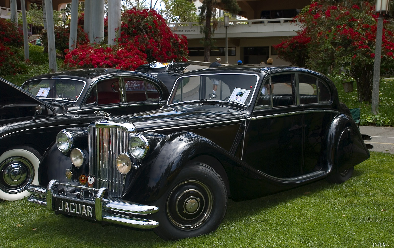 1950 Jaguar Mark V Information And Photos Momentcar