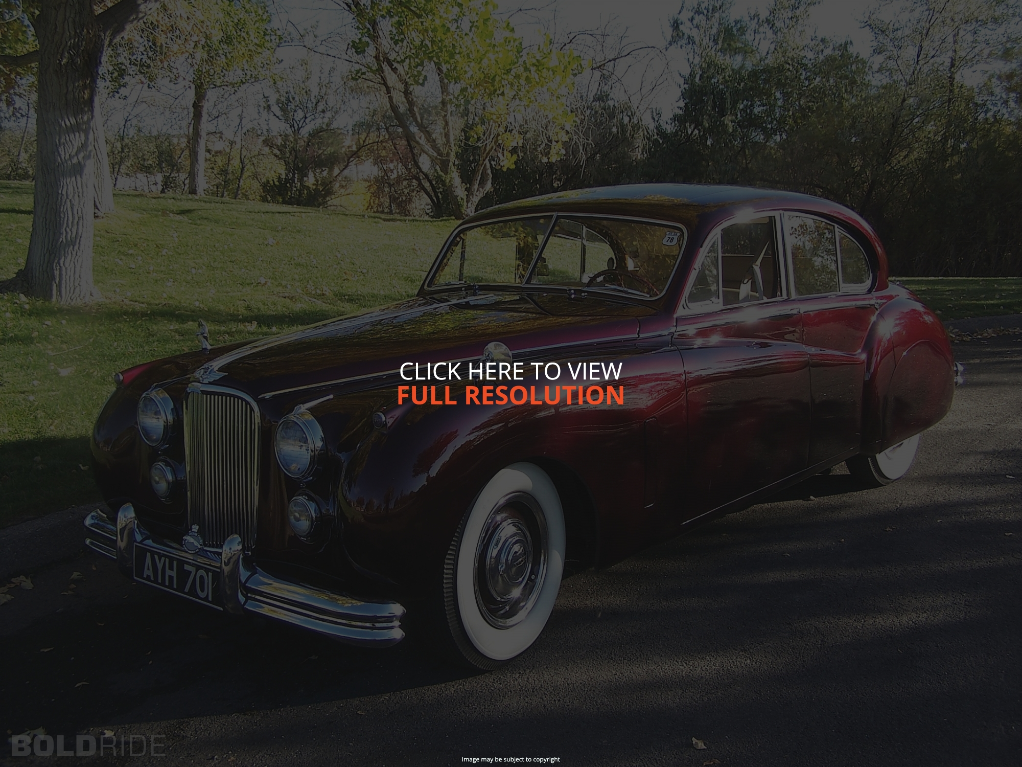Jaguar Mark VII #14