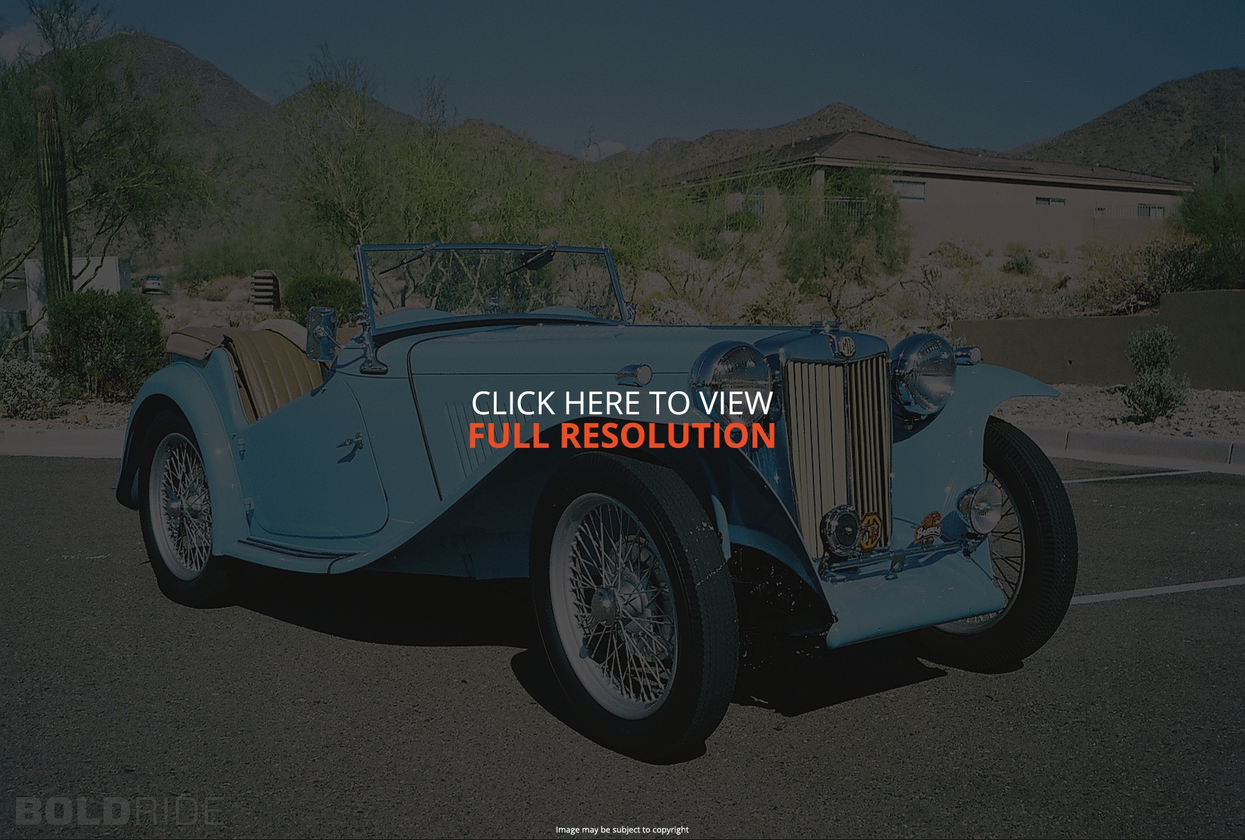 MG TC Roadster #1