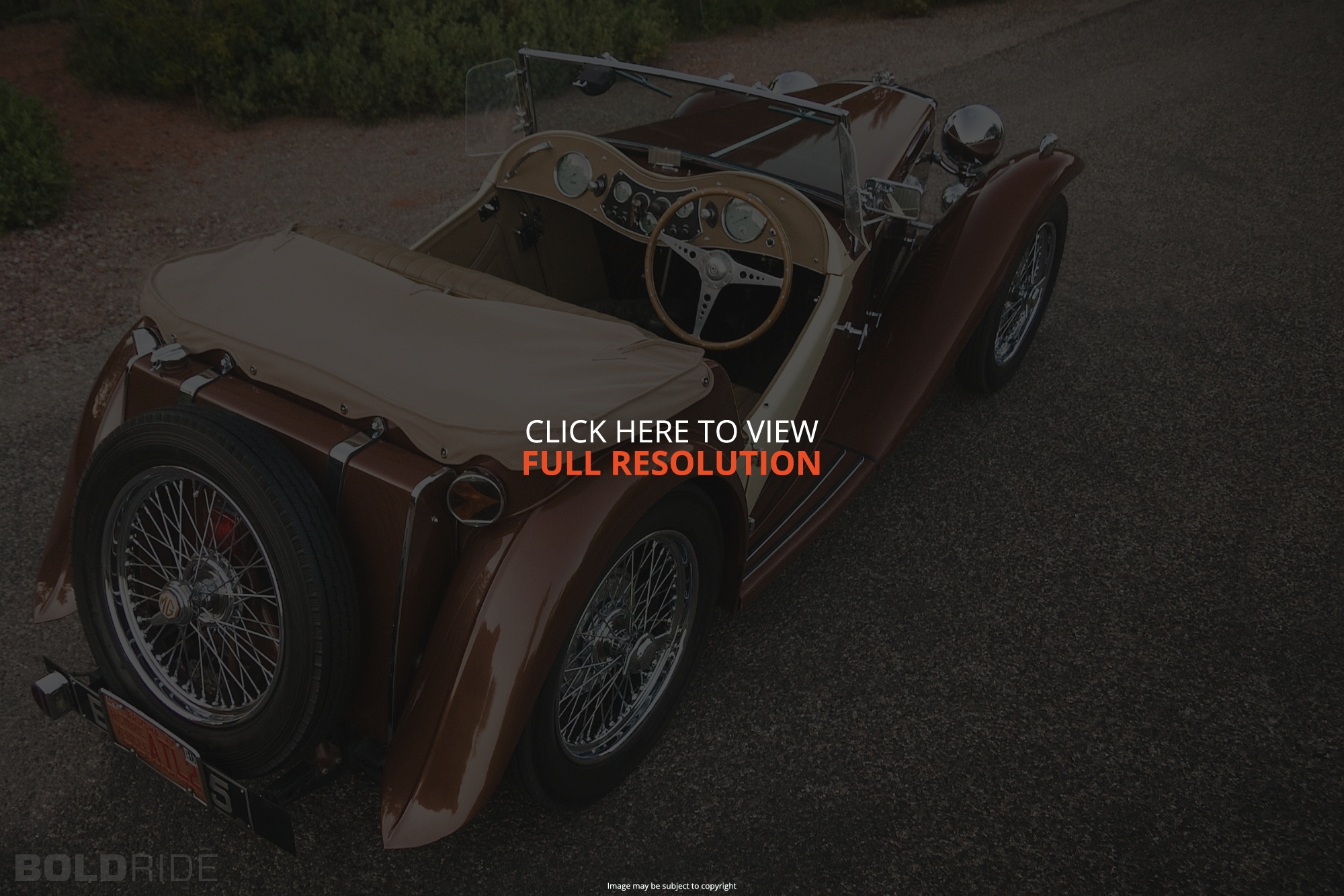 MG TC Roadster #5