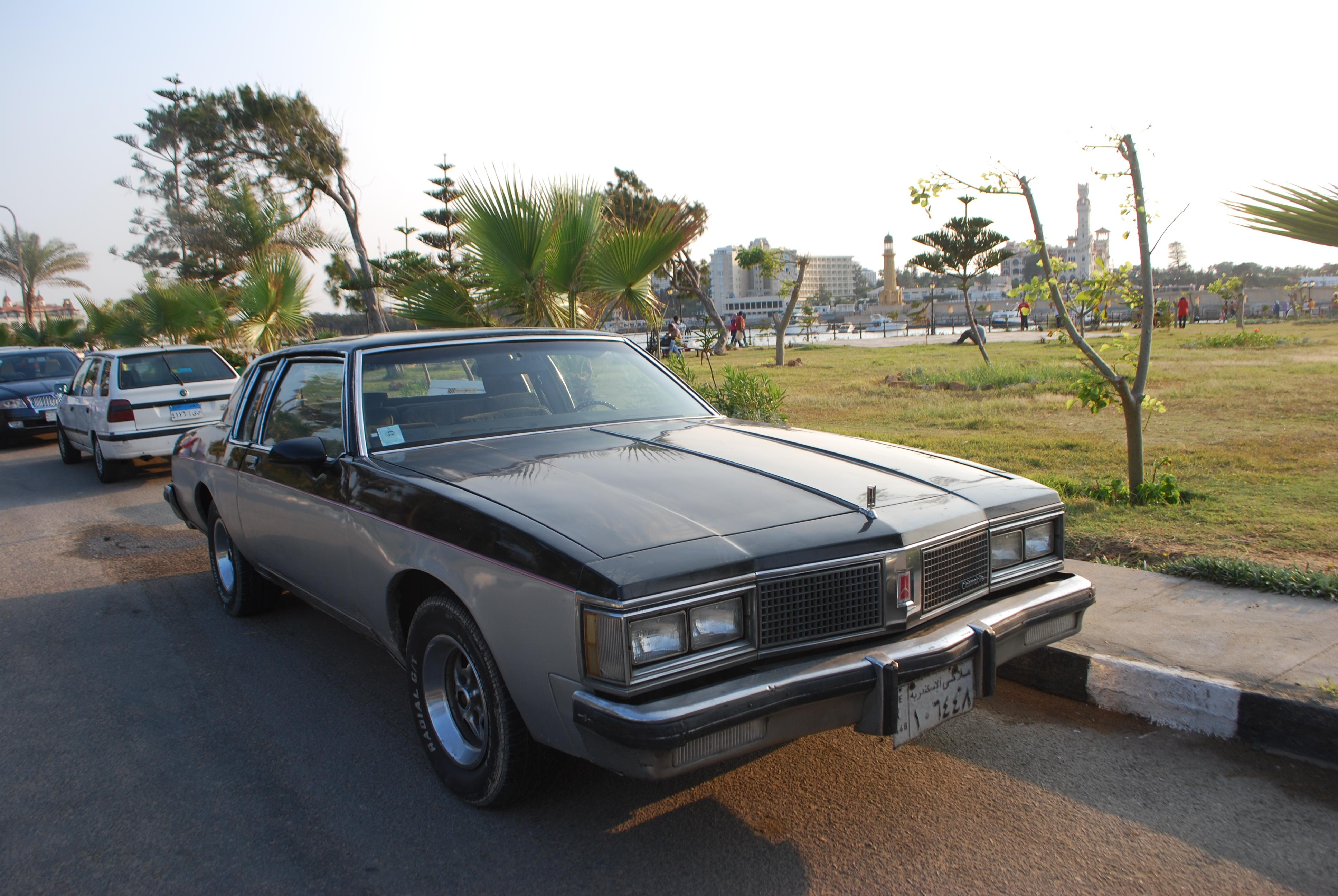 1980 Oldsmobile Delta 88 - Information and photos - MOMENTcar1980 Oldsmobile Delta 88 Photos