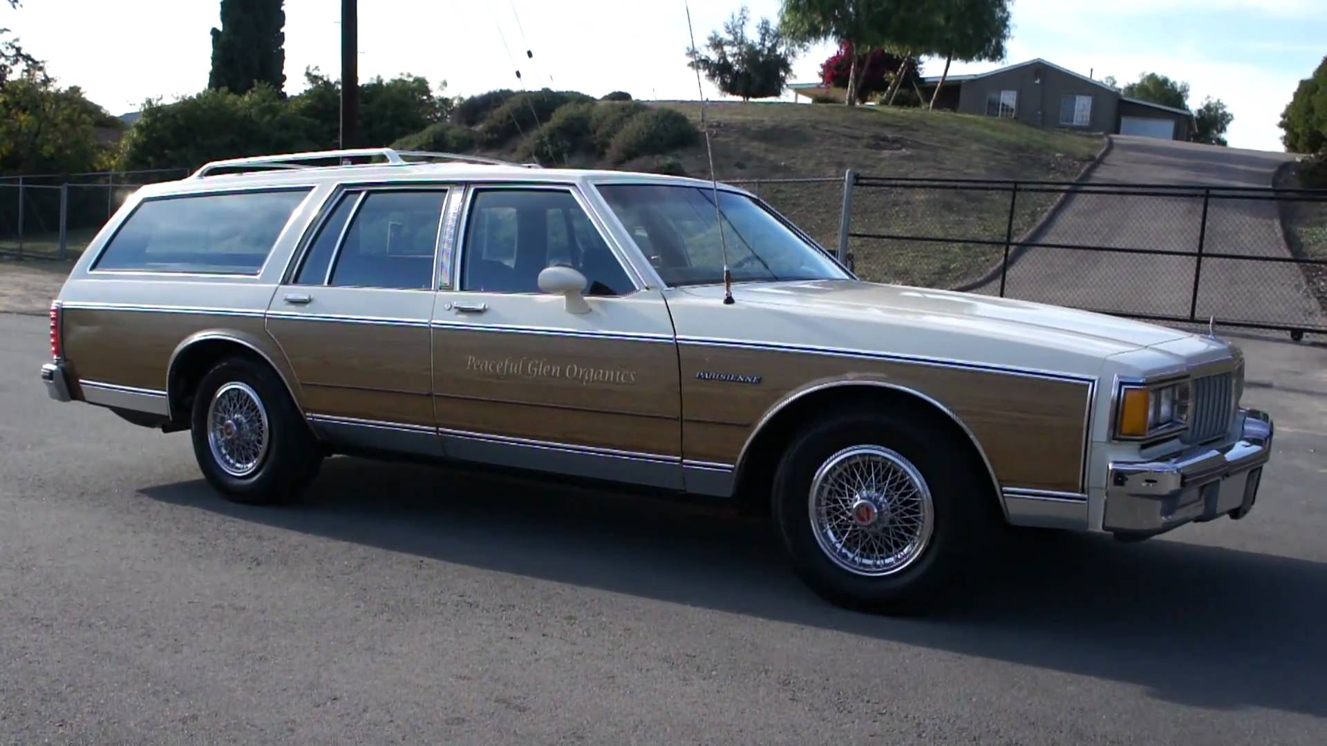 1984 Pontiac Parisienne Information And Photos Momentcar