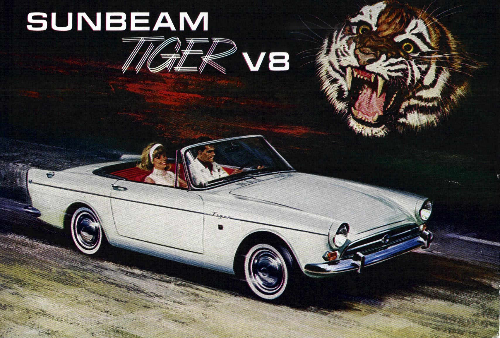 Sunbeam Tiger #11