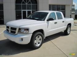 Dodge Dakota 2010 #9