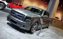 Ford F-150 FX2 #7