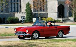 Sunbeam Tiger #9