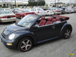 Volkswagen New Beetle Dark Flint Edition #22