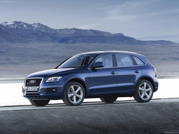 Impressive efficiency of Audi 2009 Q5
